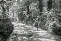 Leafy lane circa 1900.