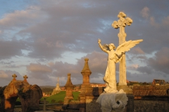 Evening in the cemetery - photo Julian Fisher.